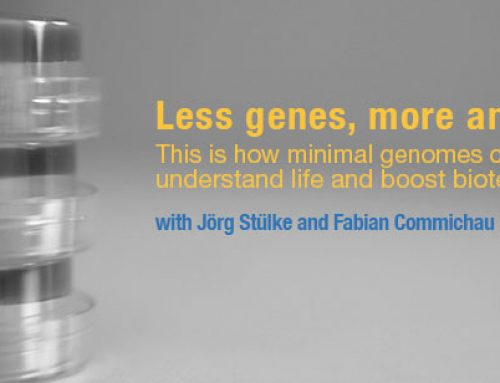 Less genes, more answers. This is how minimal genomes can help us understand life and boost biotechnology.