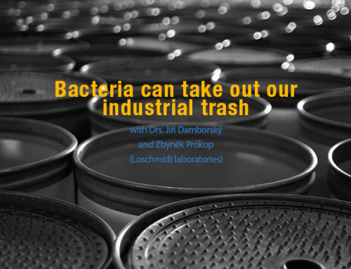 Bacteria can take out our industrial trash