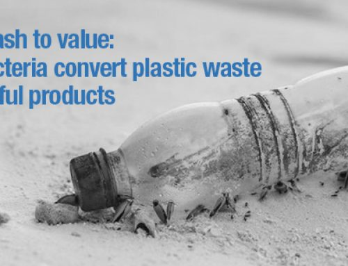 From trash to value: how bacteria convert plastic waste into something we can use