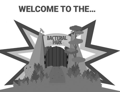 Welcome to the Bacterial Park