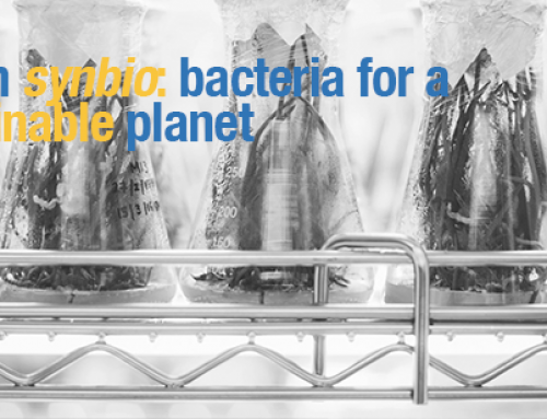 Green SynBio: Bacteria for a sustainable planet